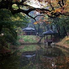 Changdeokgung_Palace.jpg