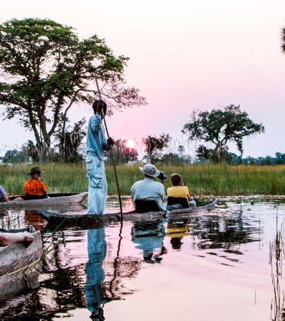 Botswana wetland tour