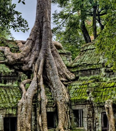 Walls of Angkor Wat temple in Siem Reap, Cambodia