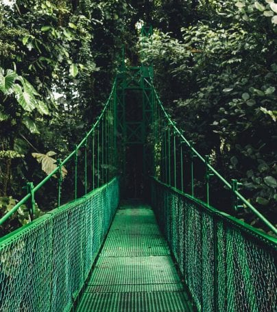 Bridge in Monteverde, Costa Rica
