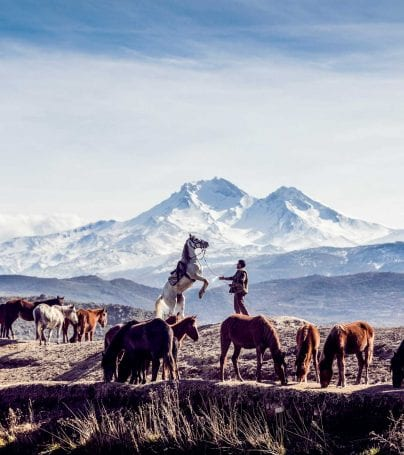 Man with horses in front of Mount Erciyes, Turkey