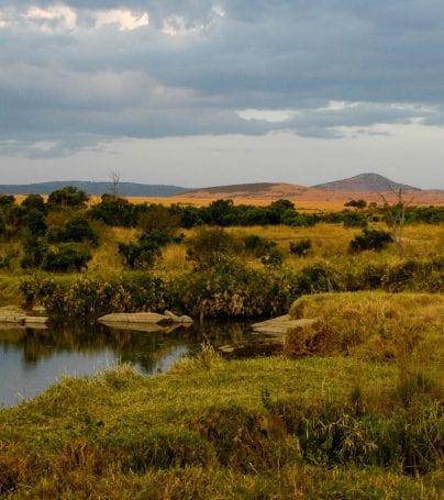 Maasai Mara landscape, Kenya