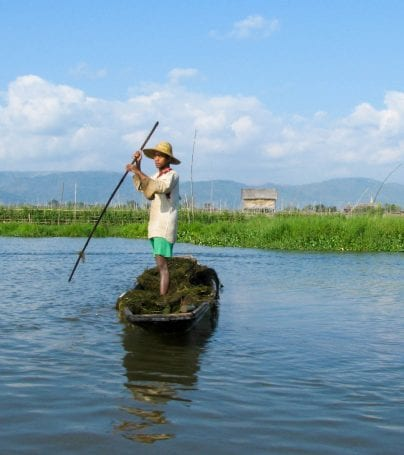 Myanmar man steers boat on Inle Lake