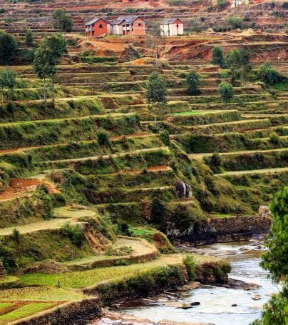 Terraced farming near Antsirabe, Madagascar