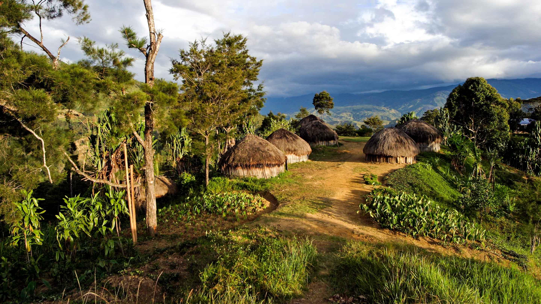Village huts in Papua New Guinea