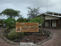 Learn about preservation efforts at Darwin Station