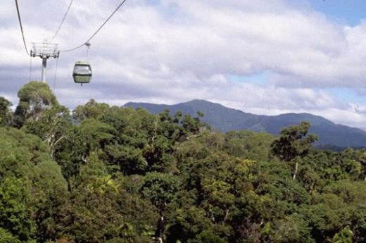 Amazing Views from the Skyrail