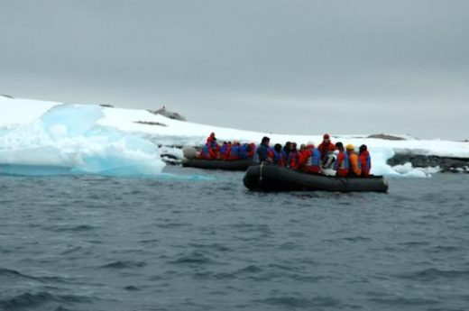 Watch for wildlife and admire the icebergs from your Zodiac