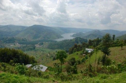 Visit the hills around Bwindi