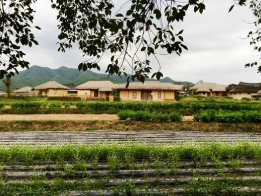 Visit the beautiful Hahoe Village