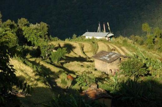 Nabji's landscape is captivating