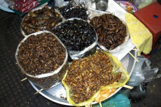 Local Cambodian delicacies - we dare you to try!