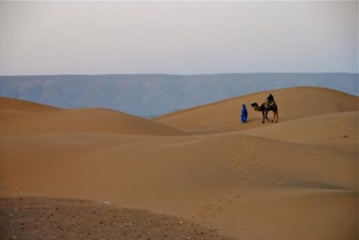 Take a desert camel ride at dusk