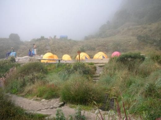 A view of the camp