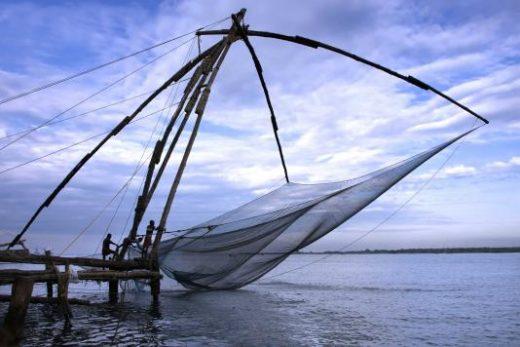Observe local fishermen