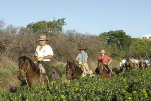 Enjoy riding horse during your stay