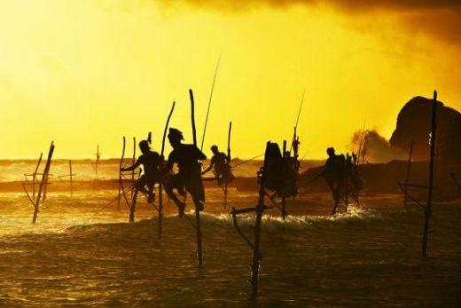 See the stilt fishermen