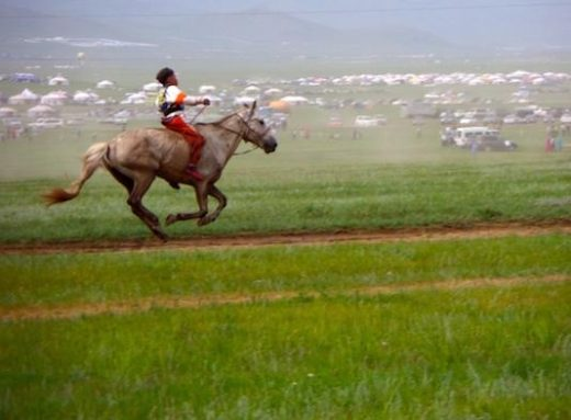 Watch the children race horses at the Naadam Festival