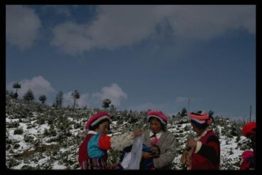 Tibetans of Yunnan