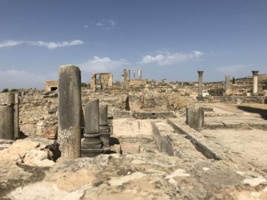See the fascinating ruins at Volubilis