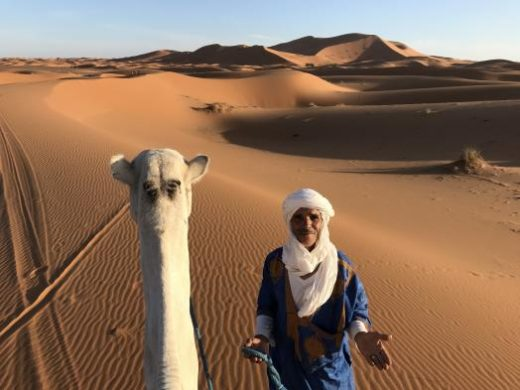 Your camel guide will lead you through the desert