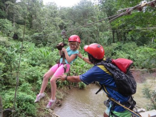Zipline through the canopy