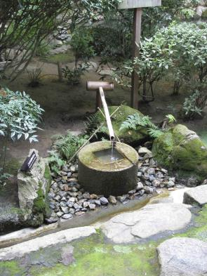 Explore Japanese style gardens in Kyoto