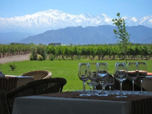 Enjoy wine tasting of Mendoza (Photo: )