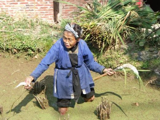 Fishing in rural China