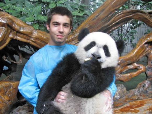 Hold a baby panda!
