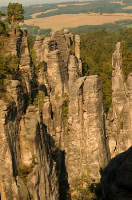 Walk among the sandstone spires at Prachov Rocks.