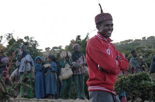 Your friendly Simien guides will show you the sites