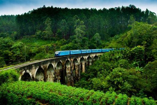 Enjoy a scenic train ride to Ella