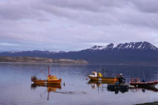 Paddle the waters around Tierra del Fuego