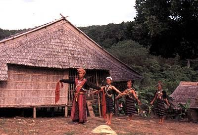 Stay in a longhouse for a great cultural experience.
