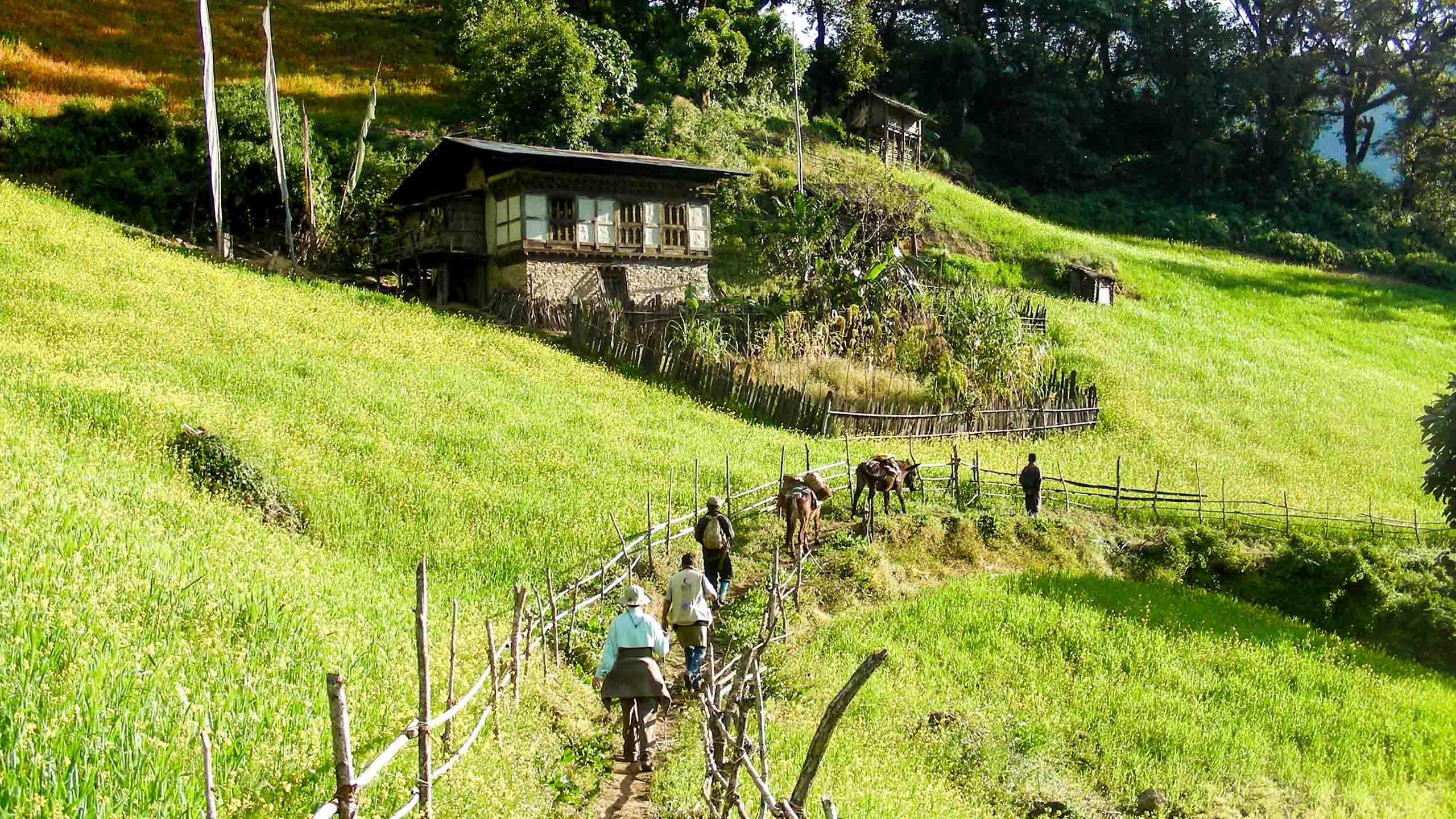 Hiking group walks through Bhutan valley