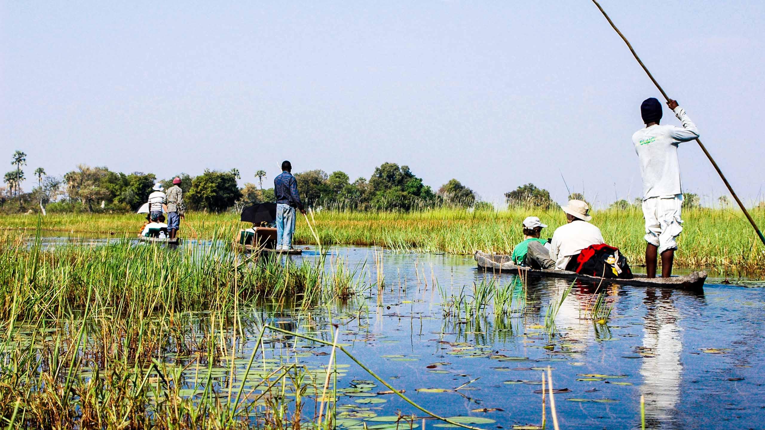 Group rafts on Botswana delta