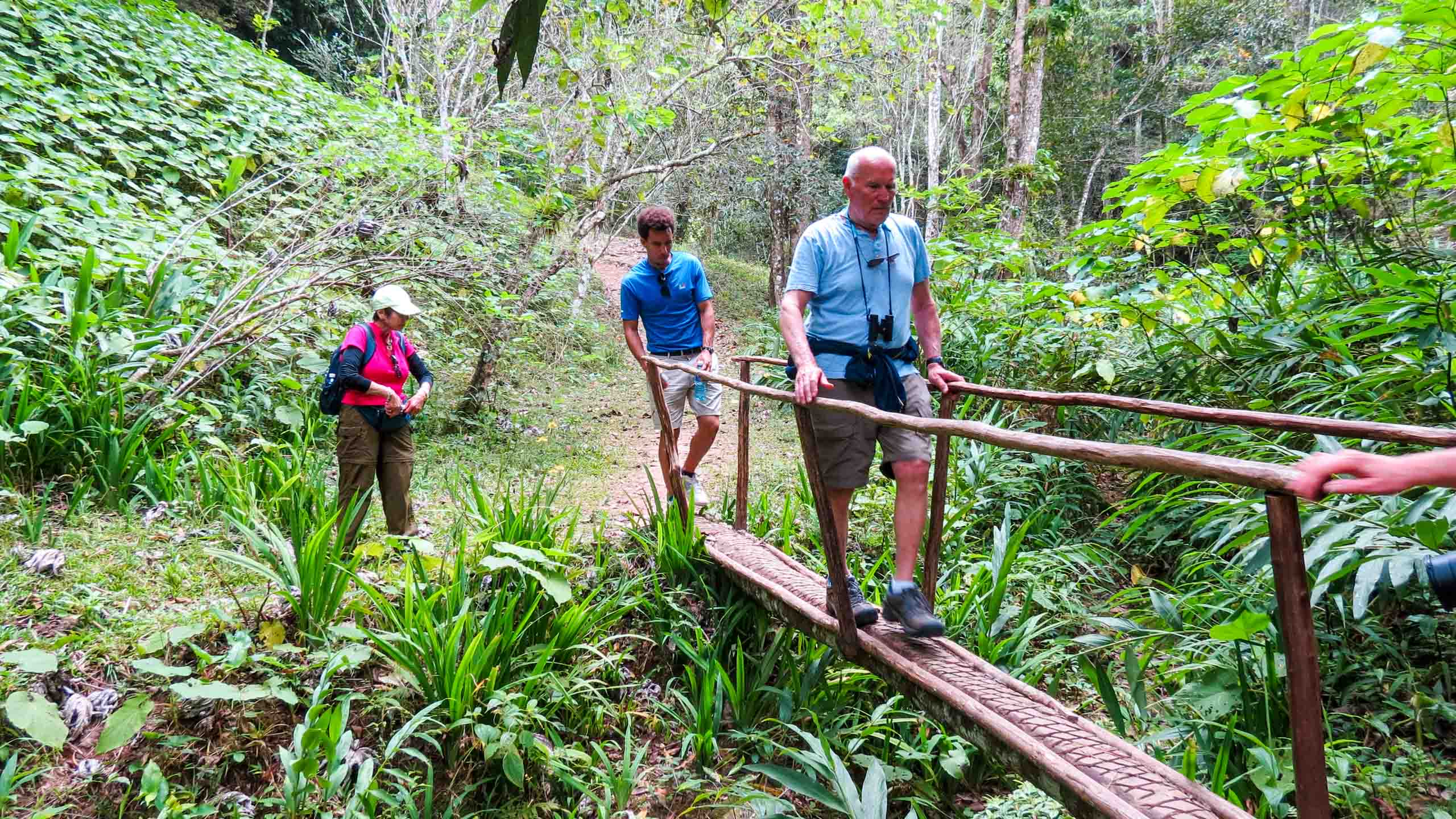 Travelers hike through Cuba forest