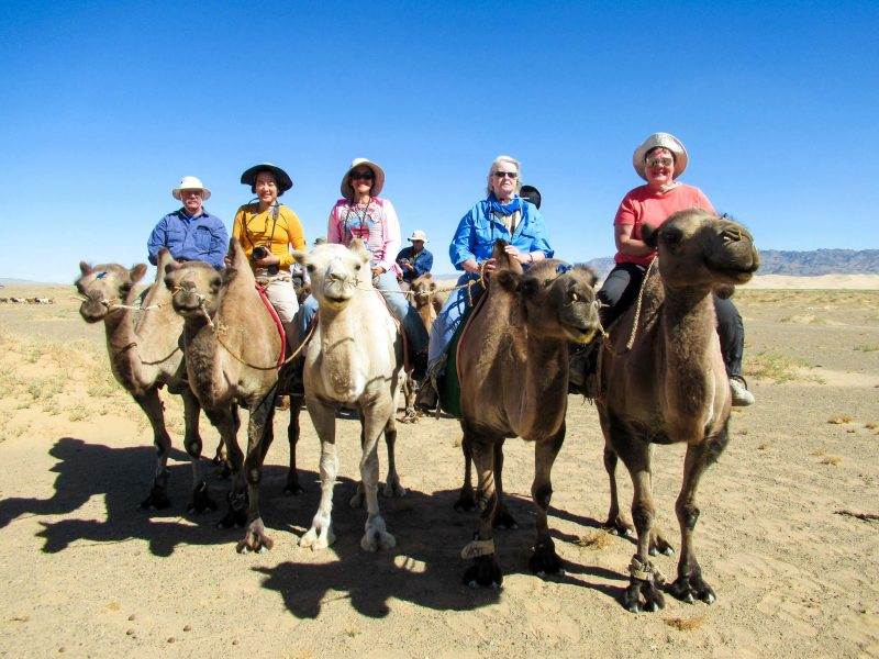 Group of travelers ride camels