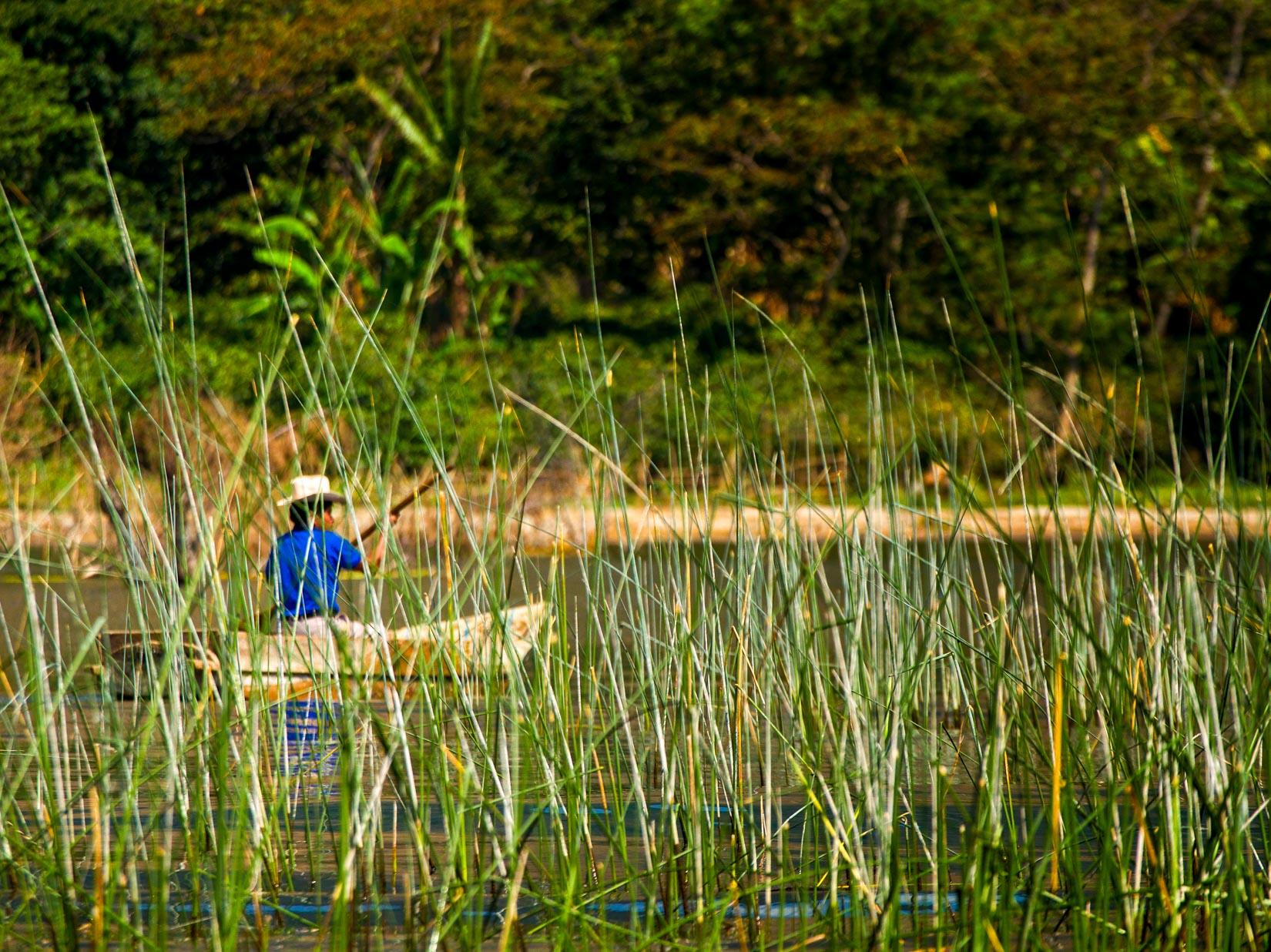 Man rows boat among Guatemala reeds