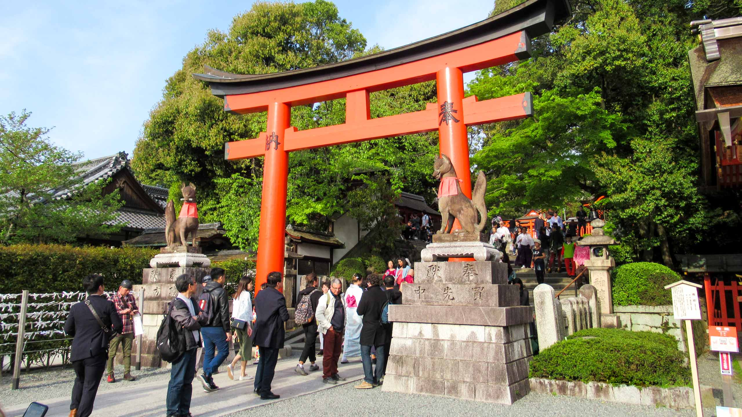 Groups of travelers walk under red Japanese archway
