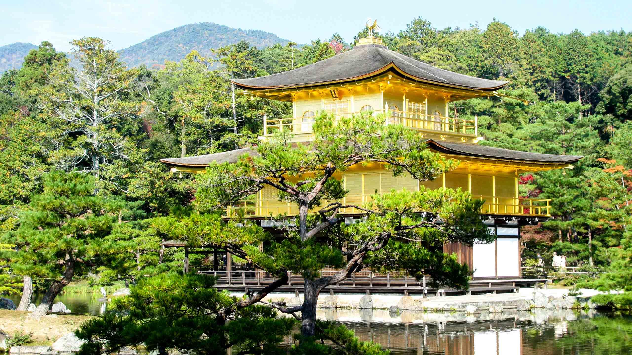 Japanese temple seen through trees