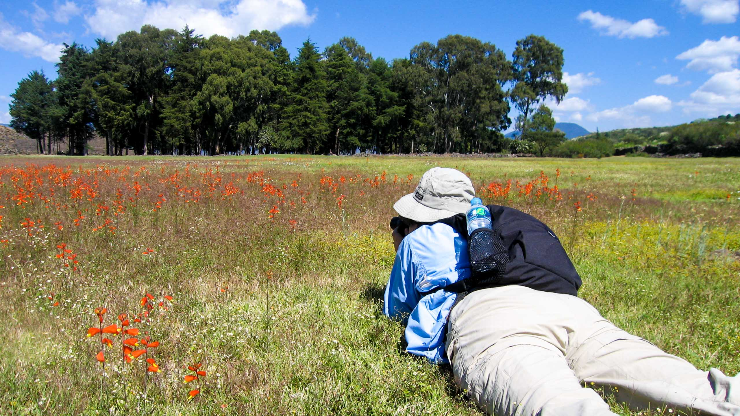 Traveler lies on stomach to take photo of field