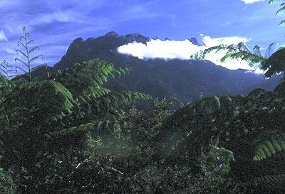 Mt. Kinabalu.