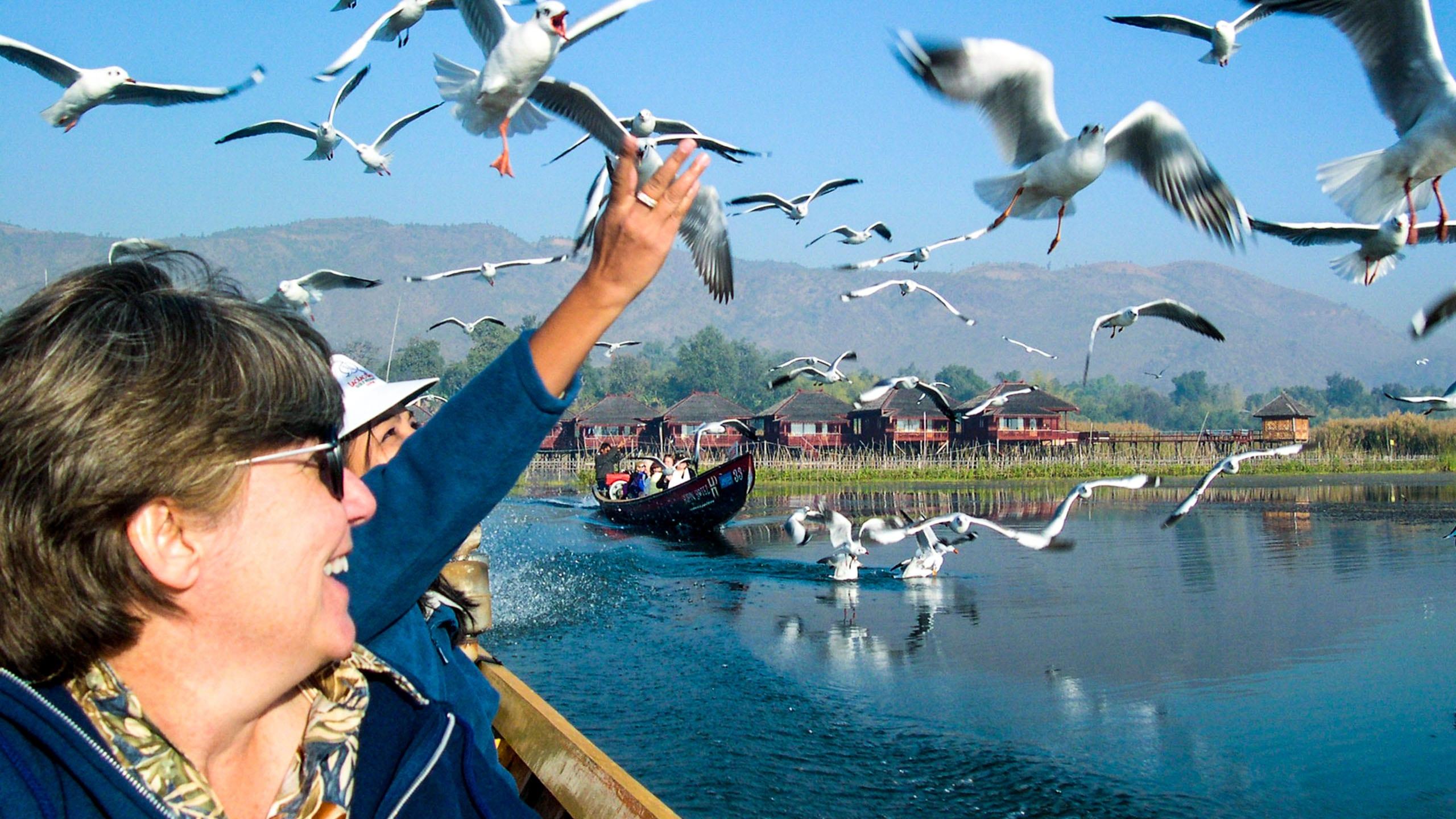 Travelers admire birds from Myanmar boat