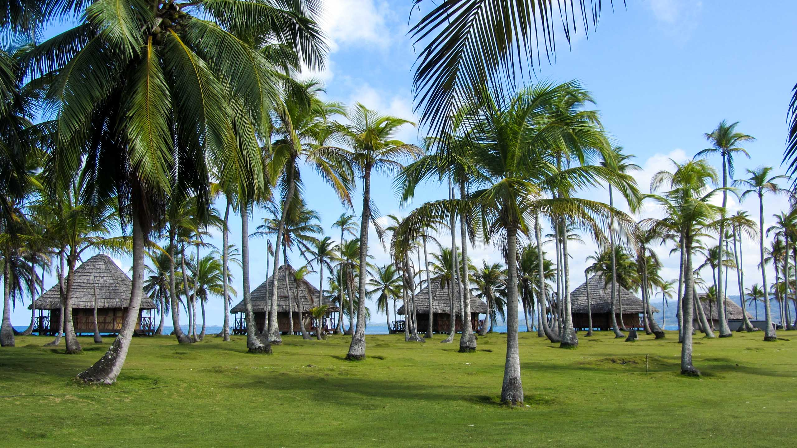 Cabins viewed through palm trees in Panama