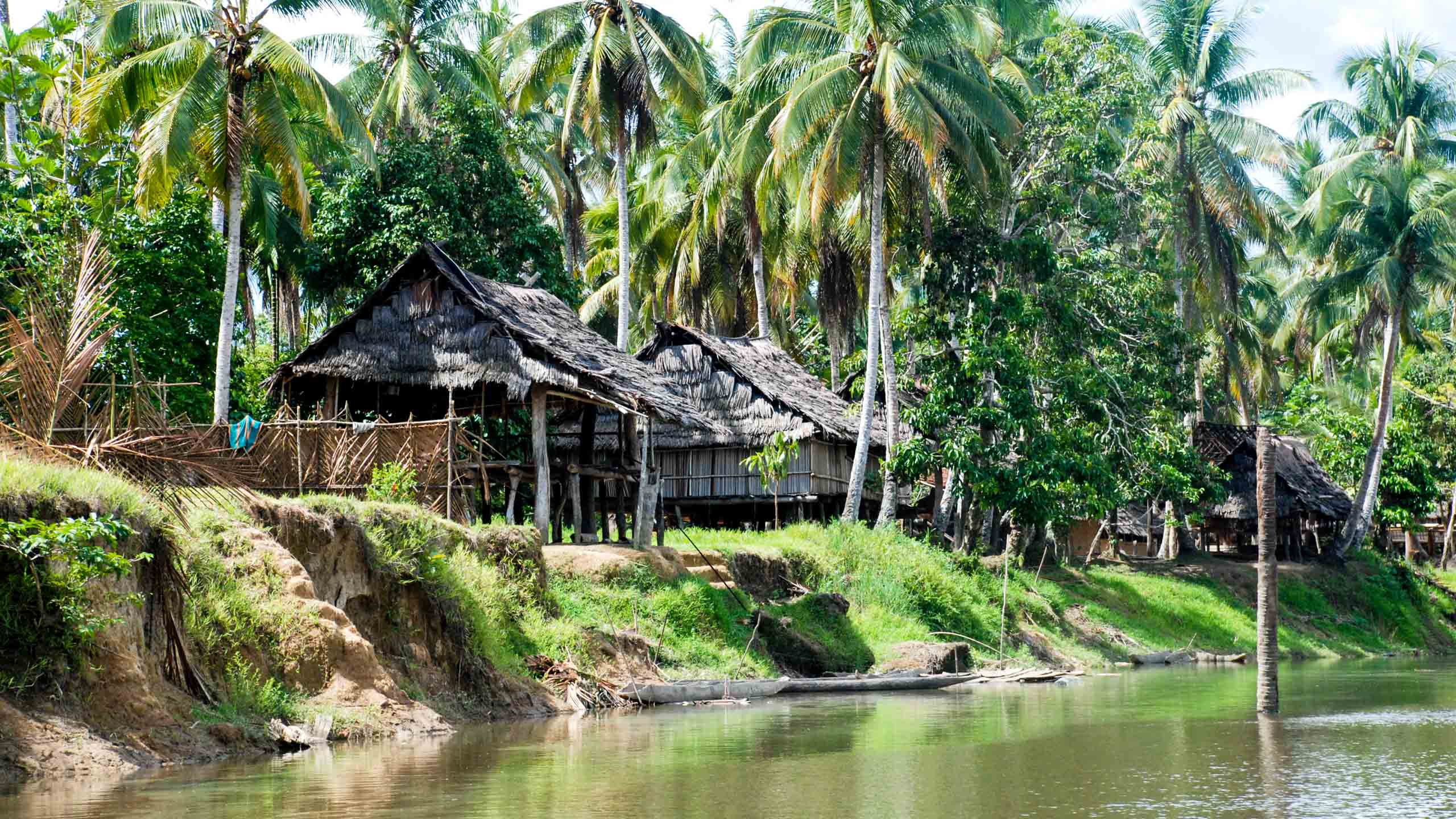 Houses on the bank of Papua New Guinea river