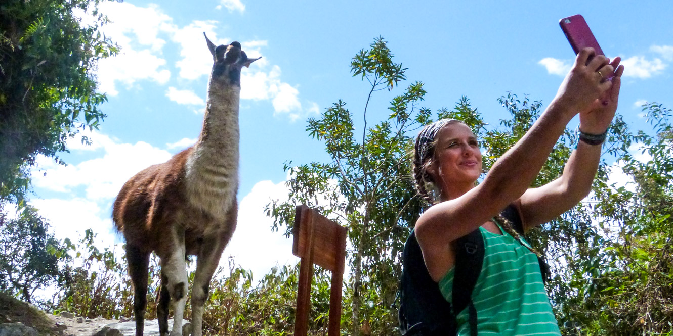 Woman takes selfie with llama in Peru