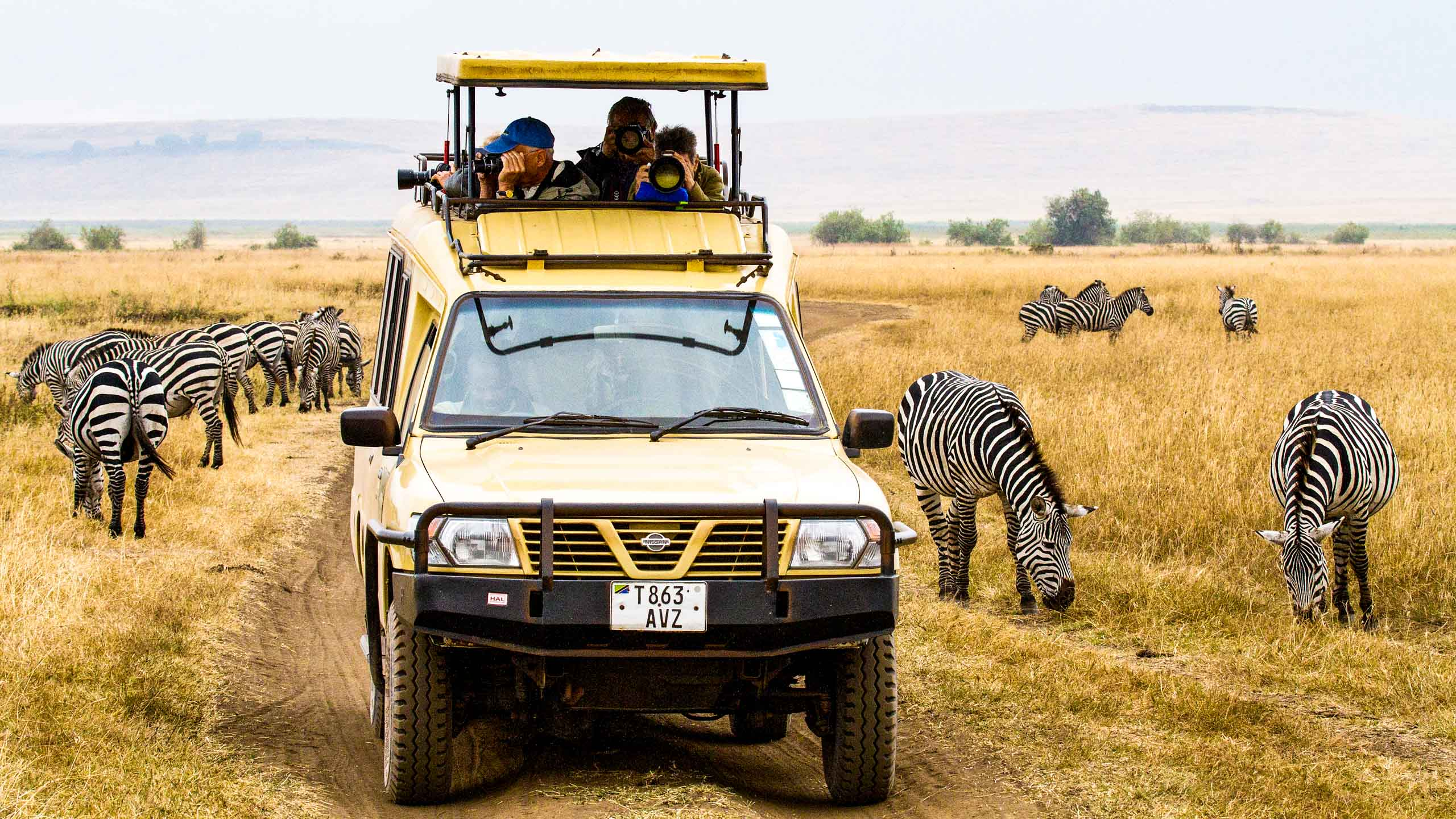 Tanzania travelers watch zebras from safari vehicle