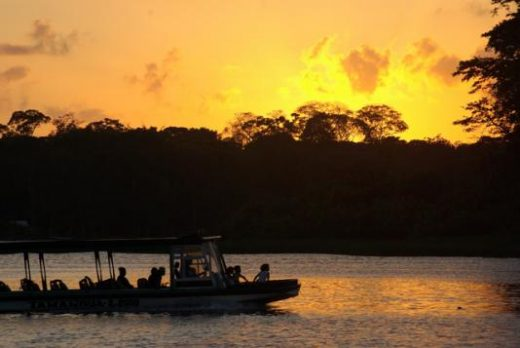 Explore the lush waterways of Tortuguero